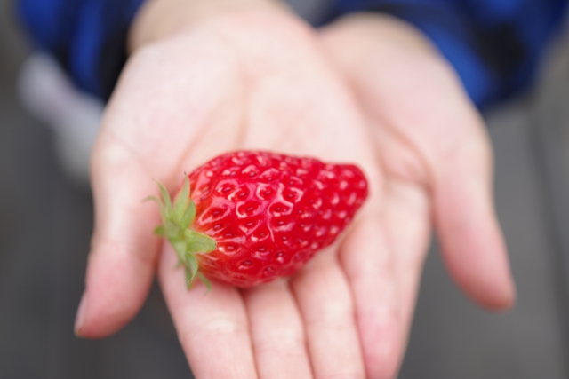 あさイチ 甘いイチゴを選ぶコツ1