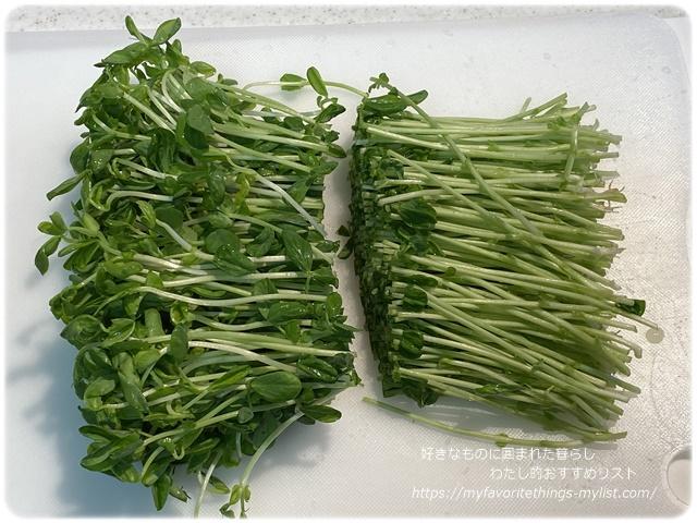 豆苗とハムの春巻き1