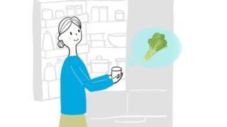 小松菜の保存方法